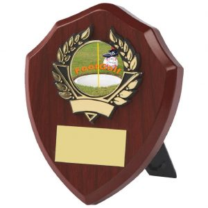 Traditional Footgolf Shield 10cms