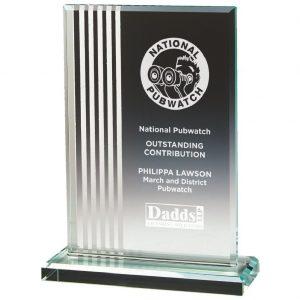 Glass Attainment Trophy 17.5cms