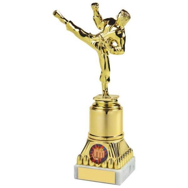 Sports Figure Trophy 23cms