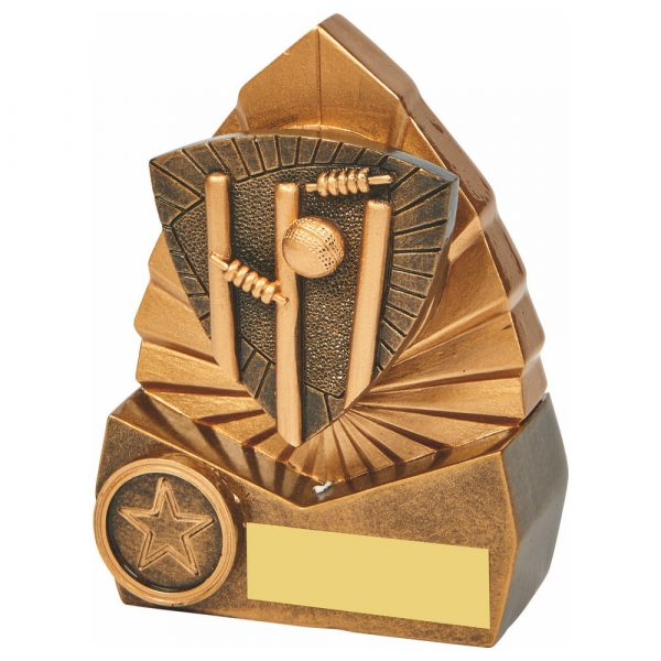 All Rounder Trophy 12cms