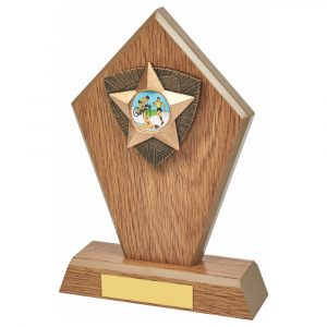 Triathlon Wood Effect Trophy