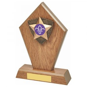 Scouts Wood Effect Trophy. Fitted with a 3D antique gold coloured resin trim which holds the scouting centres