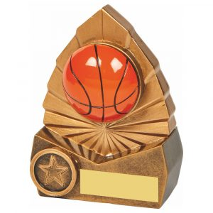 Basketball 3D Trophy 12cms
