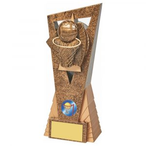 Netball Icon Trophy 21cms