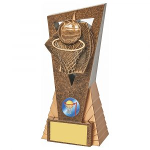 Netball Icon Trophy 18cms
