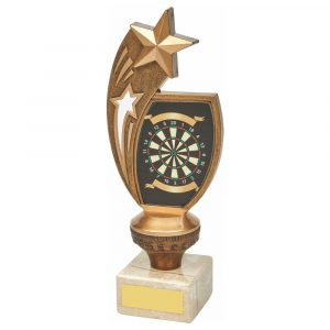 Darts Most Wins 21cms