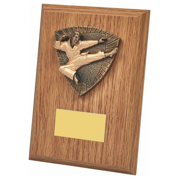 Martial Arts Wood Trophy