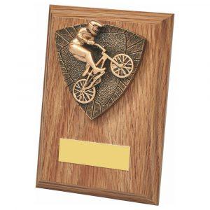 BMX Bike Wood Trophy