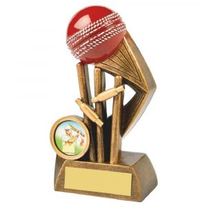 Most Wickets Trophy 13cms