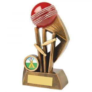 Most Wickets Trophy 16cms