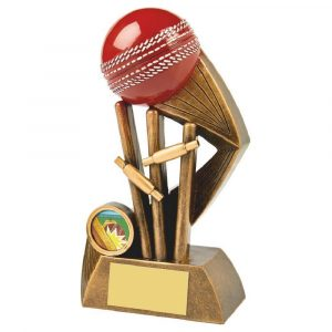 Most Wickets Trophy 18cms