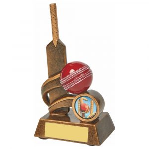 Most Runs Trophy 14cms