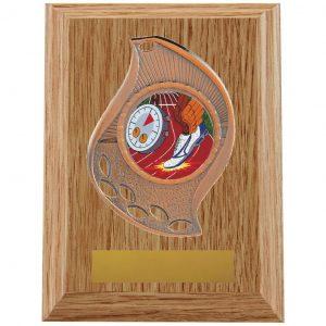 Medal Plaque Trophy Copper
